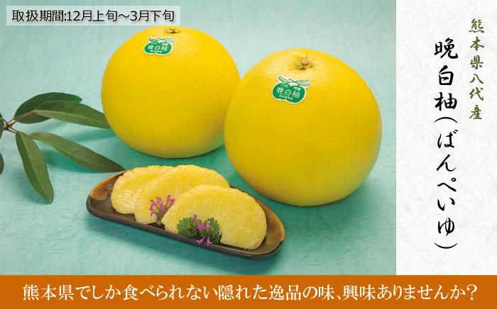 晩白柚 ギフト・贈答用高級果物...